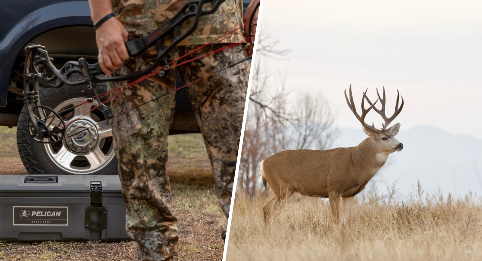 cargo case bow deer hunting