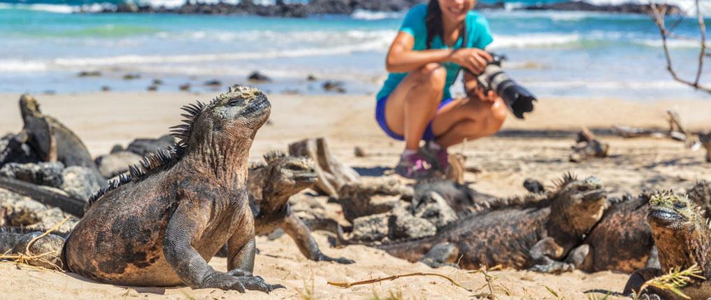 5 wildlift photography tips