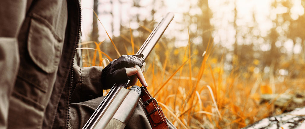 how to get into hunting