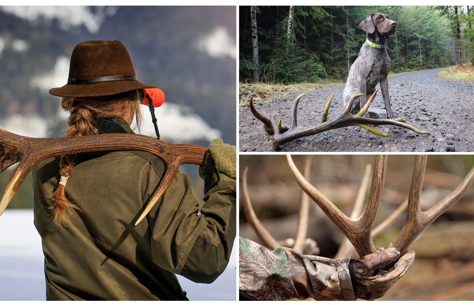 shed hunting gear