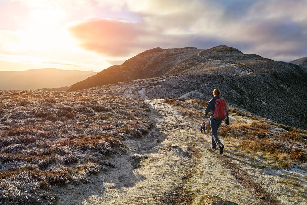 hiker their dog walking towards mountain