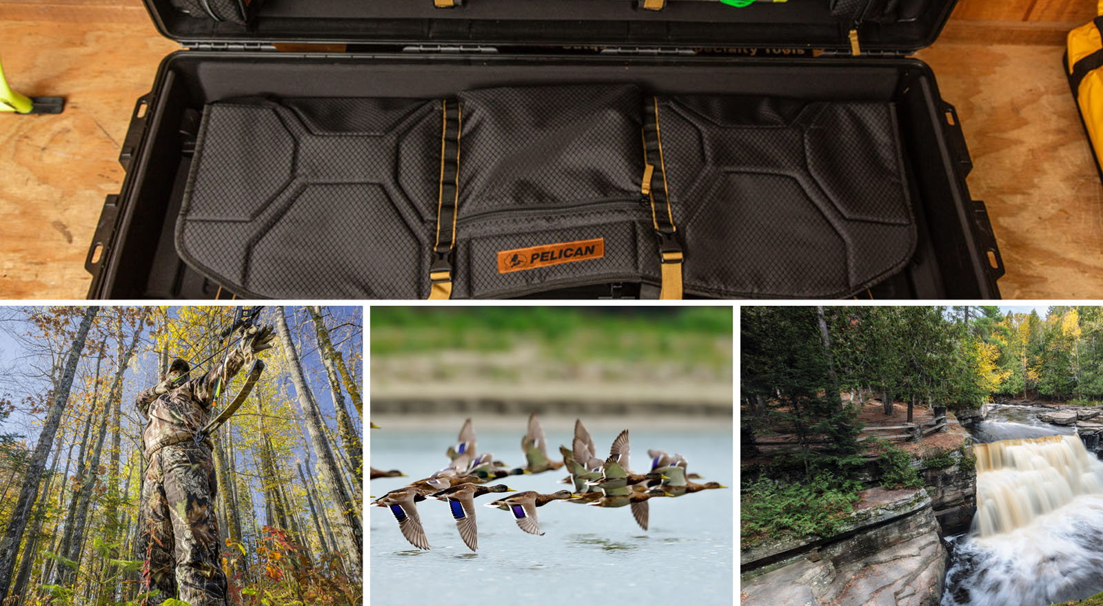 bow case hunting outdoors