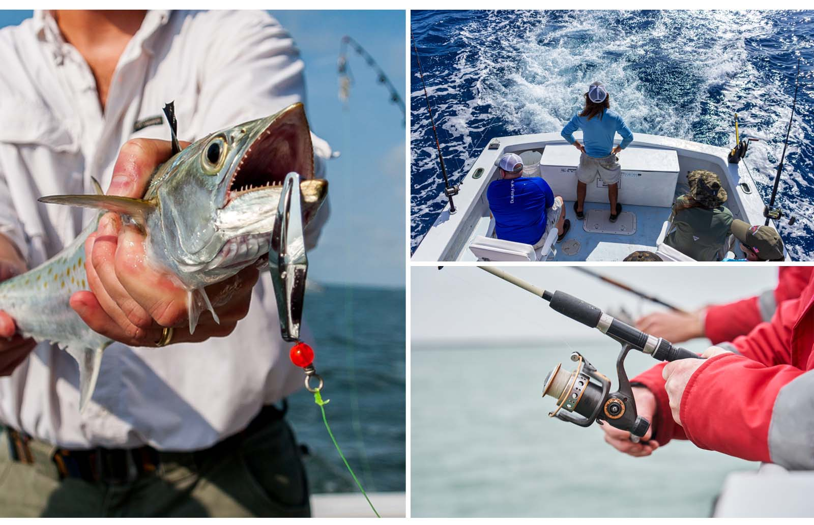 be excellent fishing guide