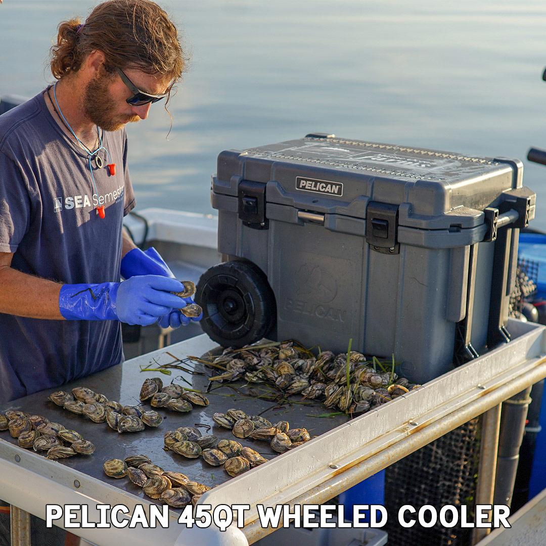 pelican consumer blog 45qt beverage drink elite wheeled cooler