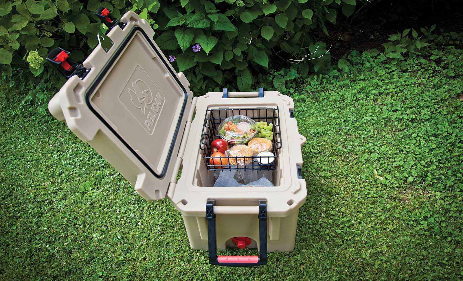 camping food shop coolers