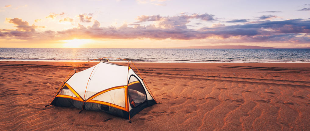 pelican consumer blog beach camping what you need to know
