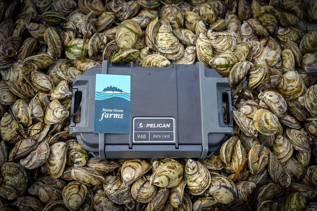 pelican pro team maine ocean farms ruck case