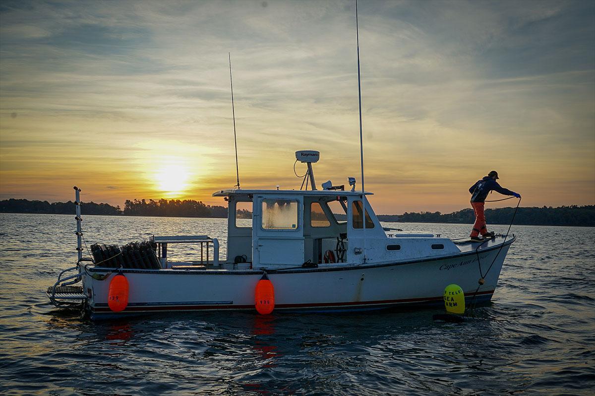 pelican pro team oransky leathers maine ocean farms