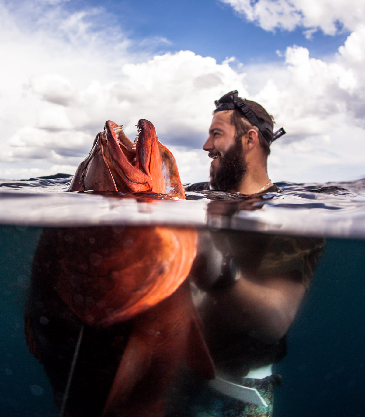 john dornellas underwater photographer