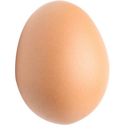 pelican custom case foam egg
